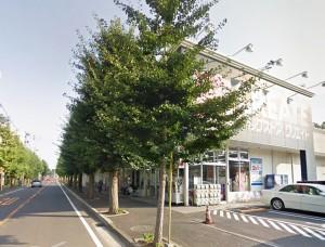 県ドリームハイツ周辺_クリエイトSD戸塚俣野店