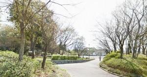 フローラ桂台近隣_桂山公園画像