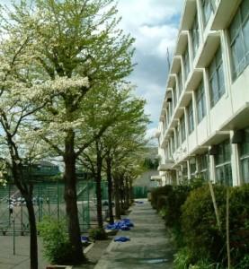 鶴ヶ峰中学校