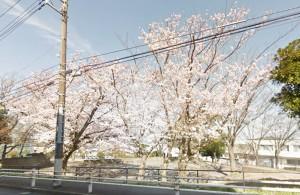 フローラ桂台近隣_花篭公園画像