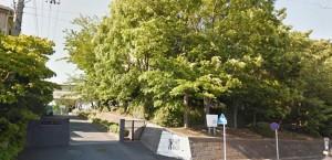 新桜ヶ丘団地学区の橘中学校の画像