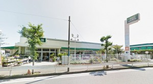 Fuji鵠沼店