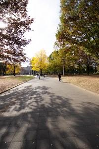 北浦和公園 (5)