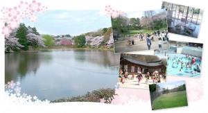三つ池公園